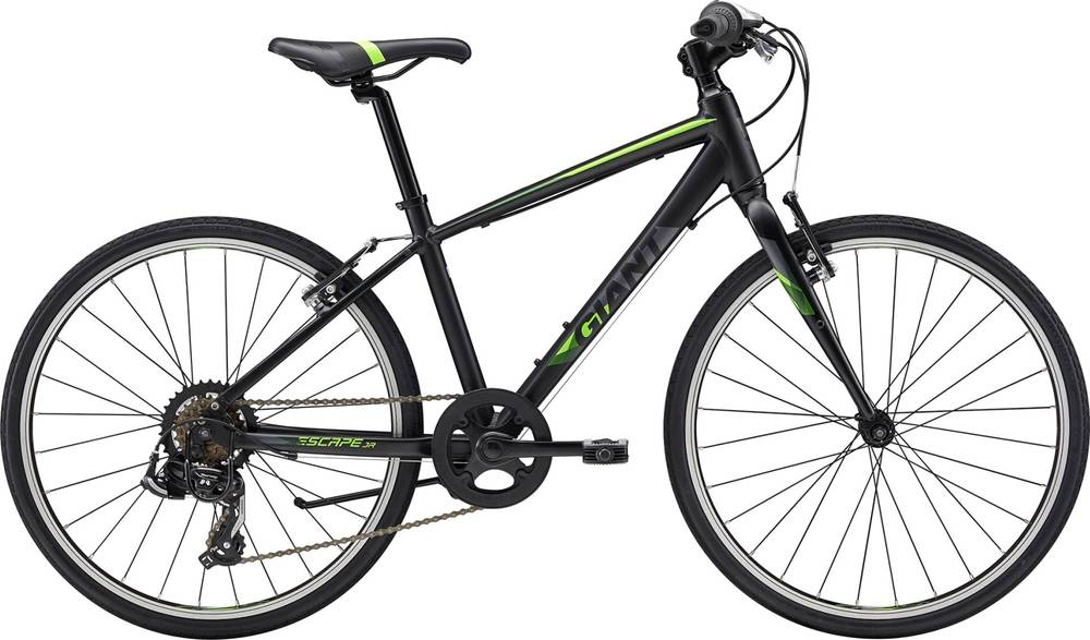 2018 Giant Escape Jr 24