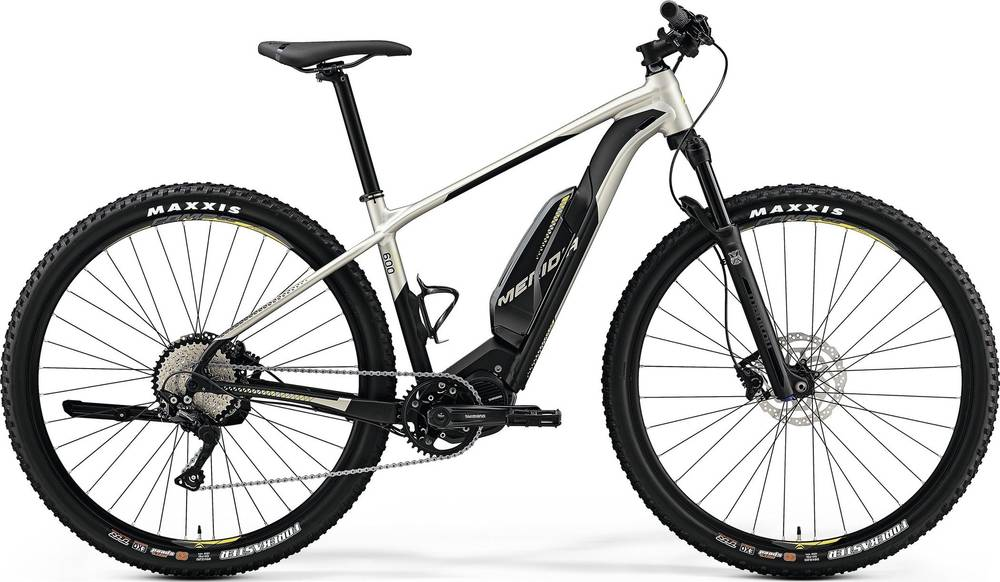 2019 Merida eBIG.NINE 600 EQ