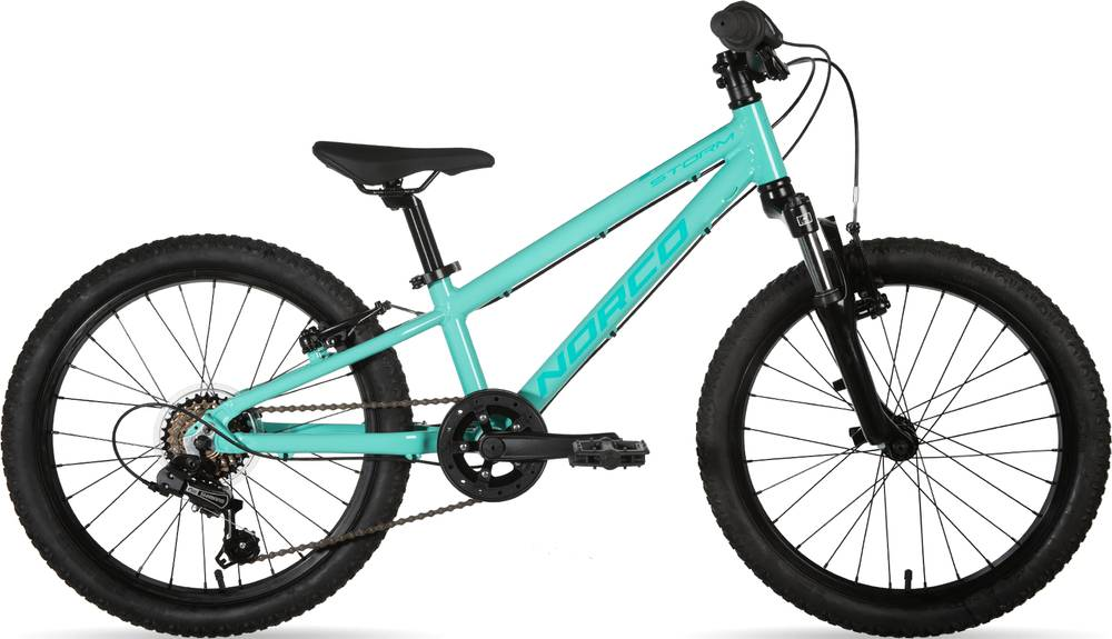2020 Norco Storm 2.2