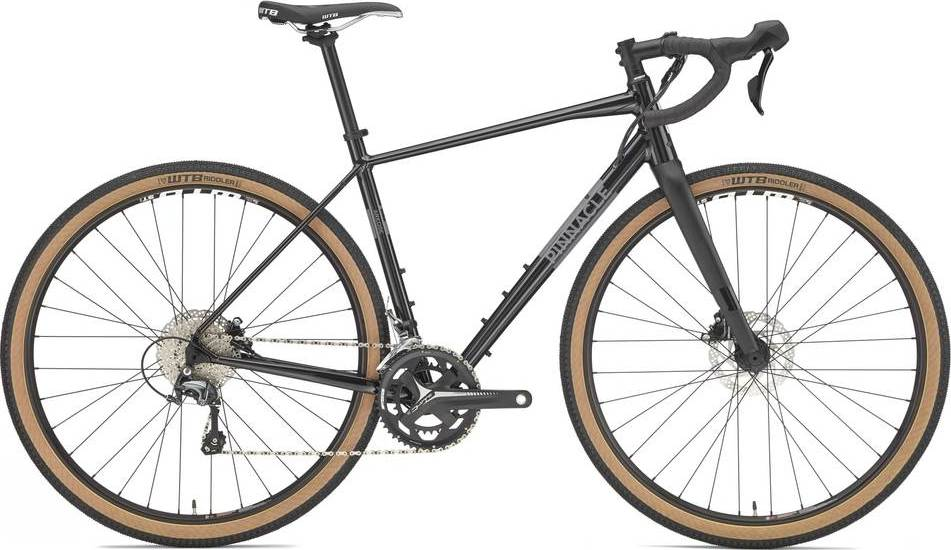 2020 Pinnacle Arkose D2